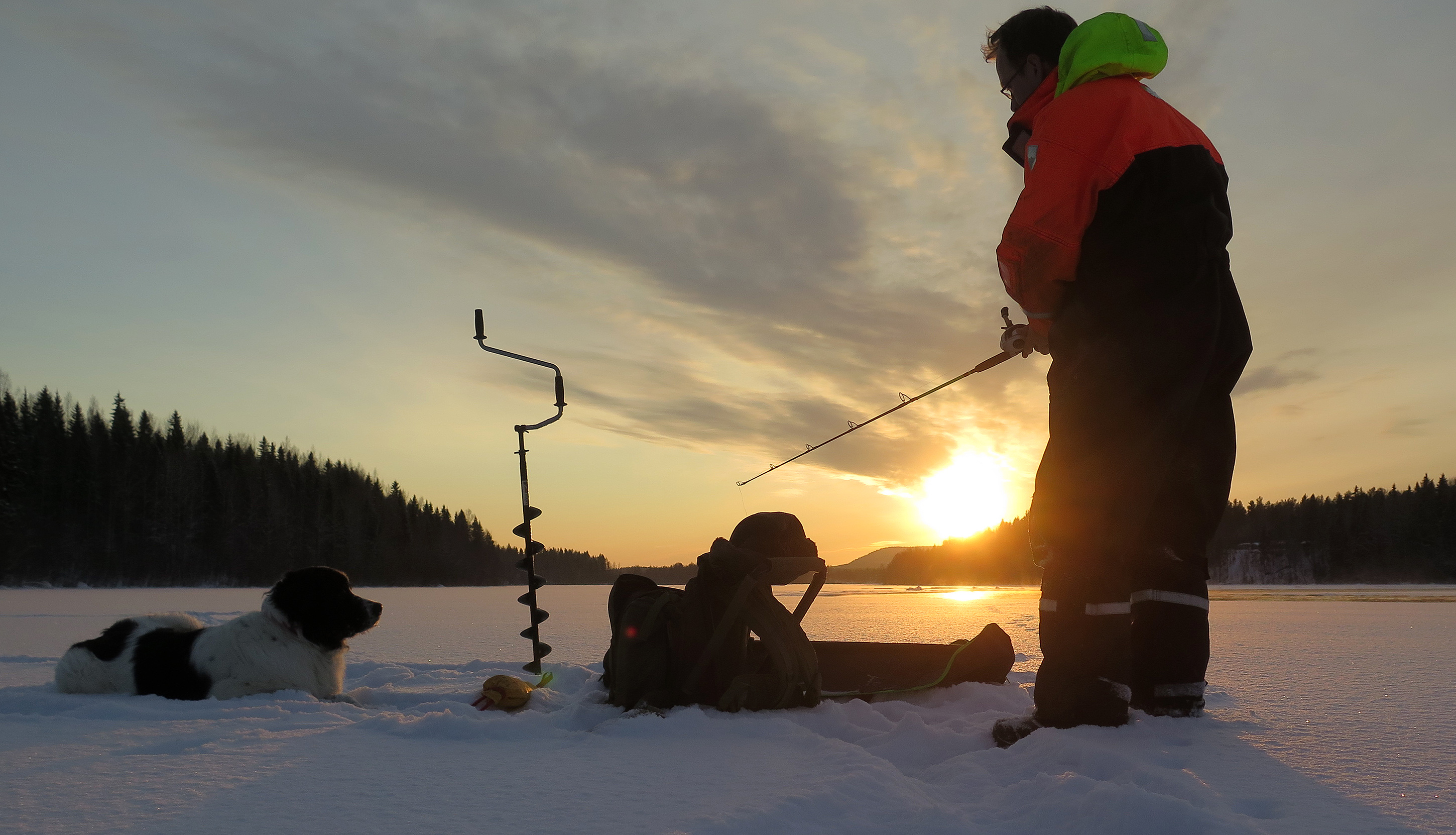 Ice fishing salmon and trout on River Luleå, Swedish Lapland.